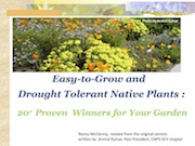 Easy-to-Grow and Drought Tolerant Native Plants