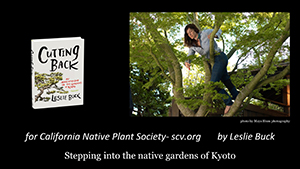 Aesthetic Pruning and Design for the Native Garden