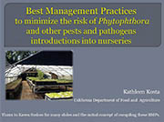 Best Management Practices to minimize the risk of Phytophthora introduction into nurseries