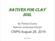 nativesForClay