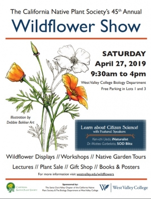2019 Wildflower Show Poster