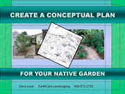Creating a Conceptual Plan for a Native Garden