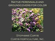 Color from Native Perennials and Groundcovers, a talk by Stephanie Curtis