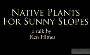 Native Plants for Sunny Slopes